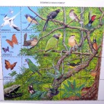 unk anole Dominican rain forest montage stamp