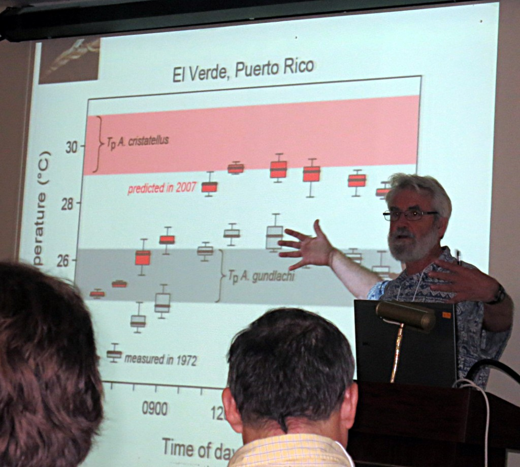 Ray Huey giving the first talk of the symposium, illustrating that present day temperatures are more suitable for A. cristatellus than A. gundlachi at the El Verde Field Station (the red circles show average temperature through the day now; the gray circles are for corresponding temperatures 40 years ago).