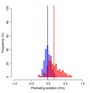 Degree of reproductive isolation (as measured from mate choice trials). The red histogram is the distribution of reproductive isolation between founder effect populations and the parental population; blue is between individuals from parental populations. 100 out of 123 surviving founder effect populations had reproductive isolation values greater than zero.