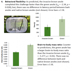 Results showing how behavioral flexibility and brain-to-body-mass ratios differ among species.