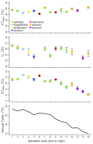 CTmax, Tb, and CTmin of cybotoid anoles & env. temperature. Modified from Fig 2 in Muñoz et al.