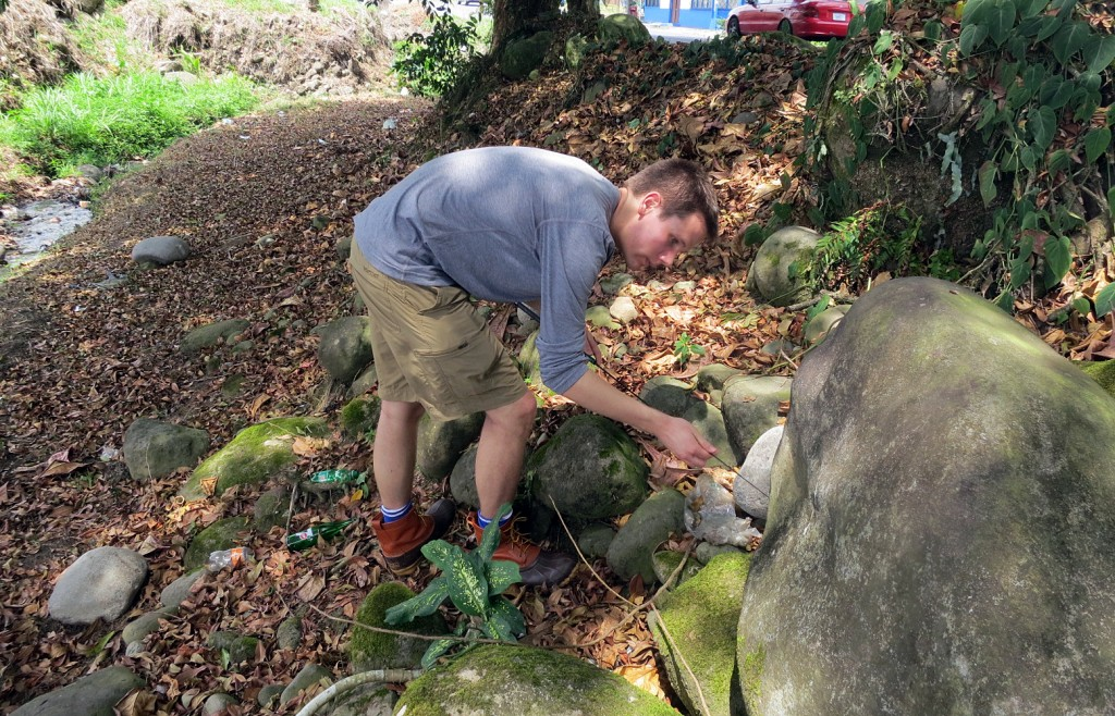Tanner Strickland in quest of crested anole in Guapiles