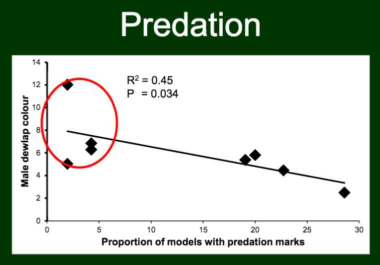 Danielle found a negative correlation between color contrast and predation intensity.