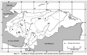 Distribution maps are provided for all species.