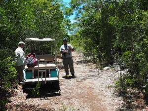 Anthony and Kevin near the golf cart. This inland forest was the tallest we could get access to on the island.
