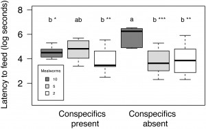 Figure 1 from Drakeley et al. (2015). Latency to feed was correlated with the number of conspecifics present and abundance of food.