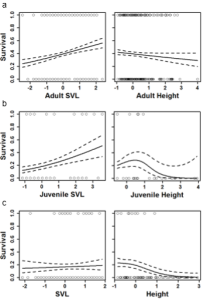 Probability of survival for (a) adults from July-October, (b) juveniles from July-October, and (c) adults overwinter in relation to standardized SVL (left column) and perch height (right column).