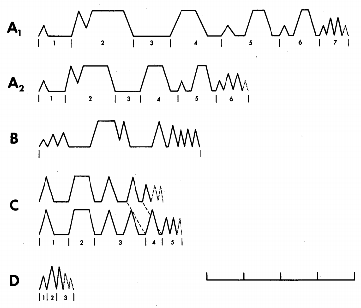 From Font & Kramer (1989). Cartoon representations of the five display types [of A. equestris]; unit durations are scaled by the sample means. The scale bar is in seconds. Dotted bobs may or may not be present at the end of the display. Unit 3 of display type C had either one or two bobs.