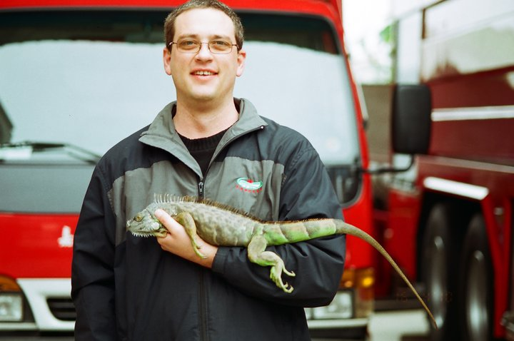 Me with a green iguana (Iguana iguana), that was removed by firefighters from someone's garden in Chiayi City.