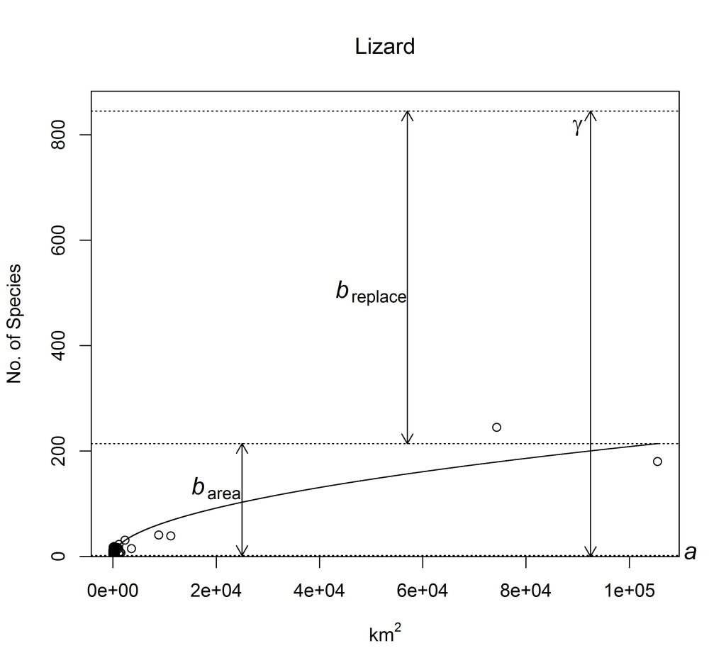 Figure 5A. SAR and additive diversity partitioning_ lizard