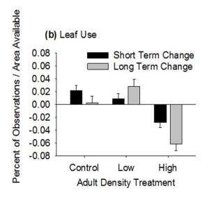 Effects of treatment and period on leaf use by juvenile lizards. Black bars indicate the short-term change in substrate use (i.e., between periods 1 and 2, which represents behavioral changes immediately after adults were introduced) and gray bars indicate the long-term change (i.e., between periods 1 and 3, which represents behavioral changes approx. 1.5 mo after adult were introduced) in substrate use.