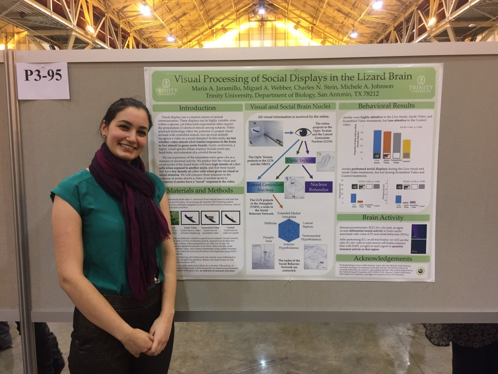 Maria Jaramillo with her poster, doing her best anole impersonation.