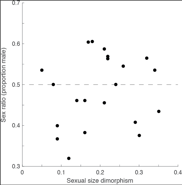 Figure 1 (from the paper) : Sex ratio versus sexual size dimorphism. Sex ratio is represented as the proportion of males among adults in the population, while sexual size dimorphism was calculated dividing the average SVL of the larger sex by the average SVL of the smaller sex, and subtracting 1 for each population. Each circle represents 1 of the 21 localities sampled in this study. The dashed line represents an equal sex ratio of 0.5. We found no relationship between sexual size dimorphism and sex ratio across the 21 localities (PGLS: adjusted R2 = −0.08, P = 0.86).