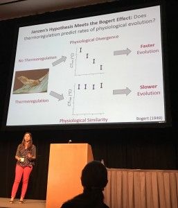 Martha explains how the thermoregulation can lead to slower evolution in a trait (the Bogert effect)