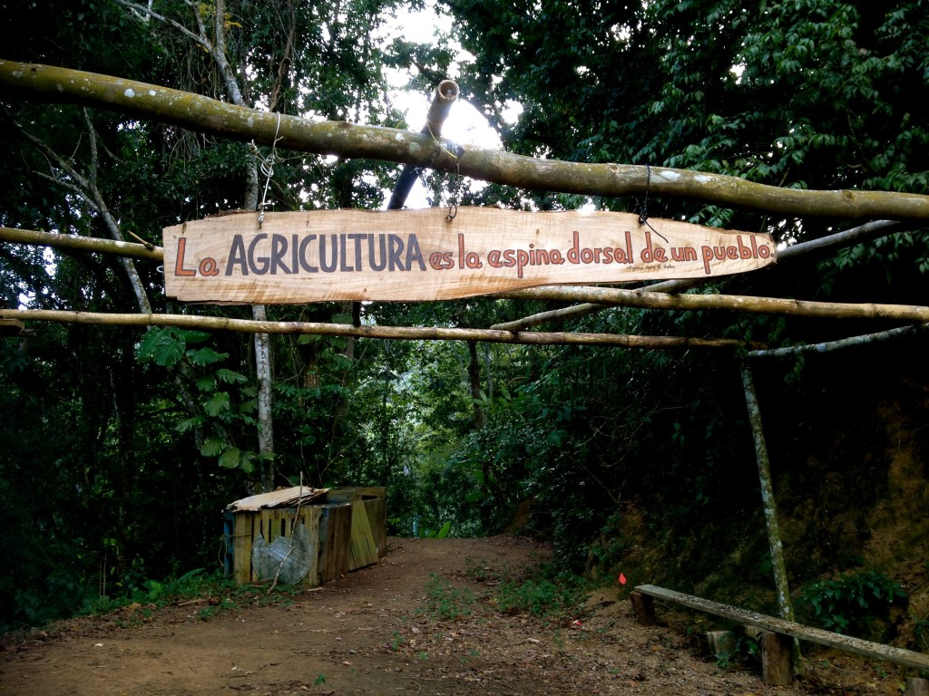 """Entrance to Finca Guaragua, a diversified shade-coffee farm in Orocovis, Puerto Rico. The sign reads, """"Agriculture is the back bone or a people/village."""""""