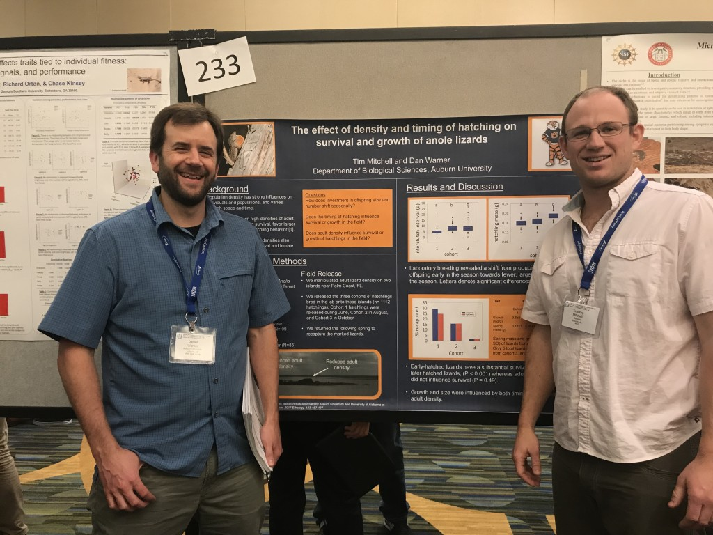 Dan Warner (left) and Tim Mitchell (right) beside their poster on impacts of population density and time of hatching on survival and early life phenotypes of Anolis sagrei